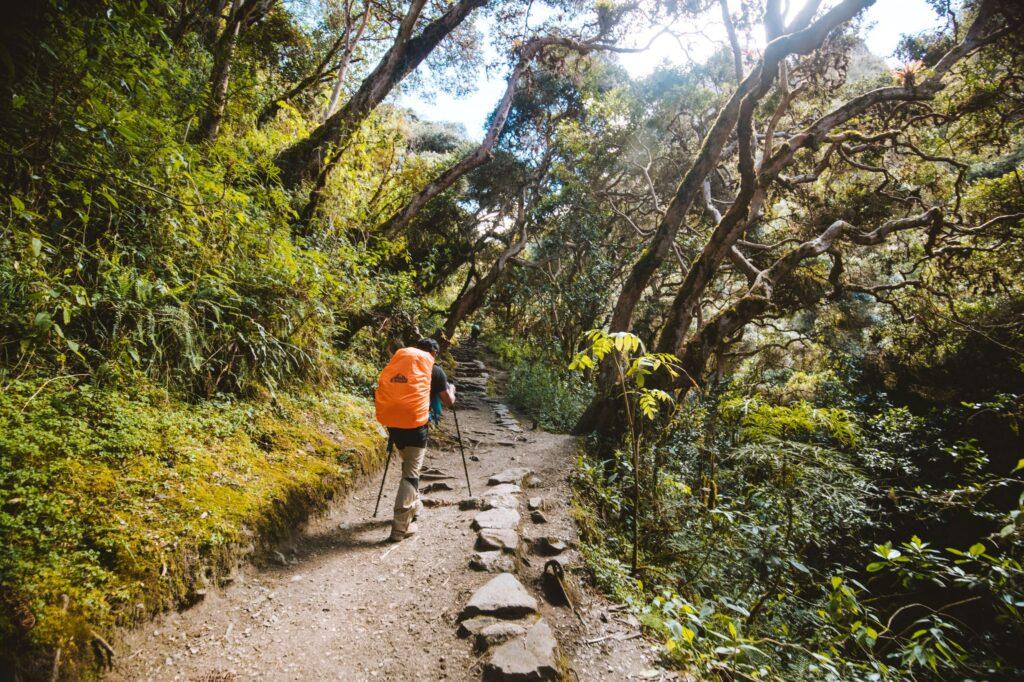 Inca Trail trekking in Peru to Machu Picchu
